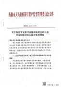 关于衡阳市发展投资集团有限公司